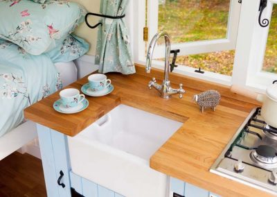 Shepherds-hut-woodland-11