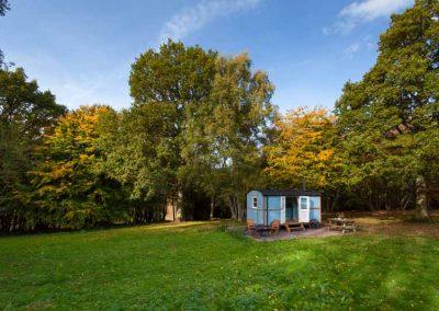 woodland shepherds hut on family farm near Elham in Kent