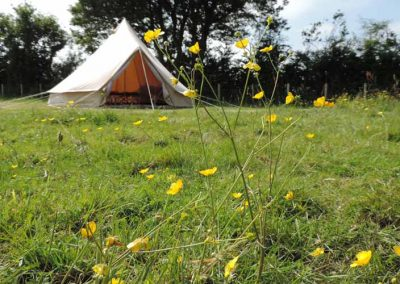 meadow-bell-tent-summer-glamping